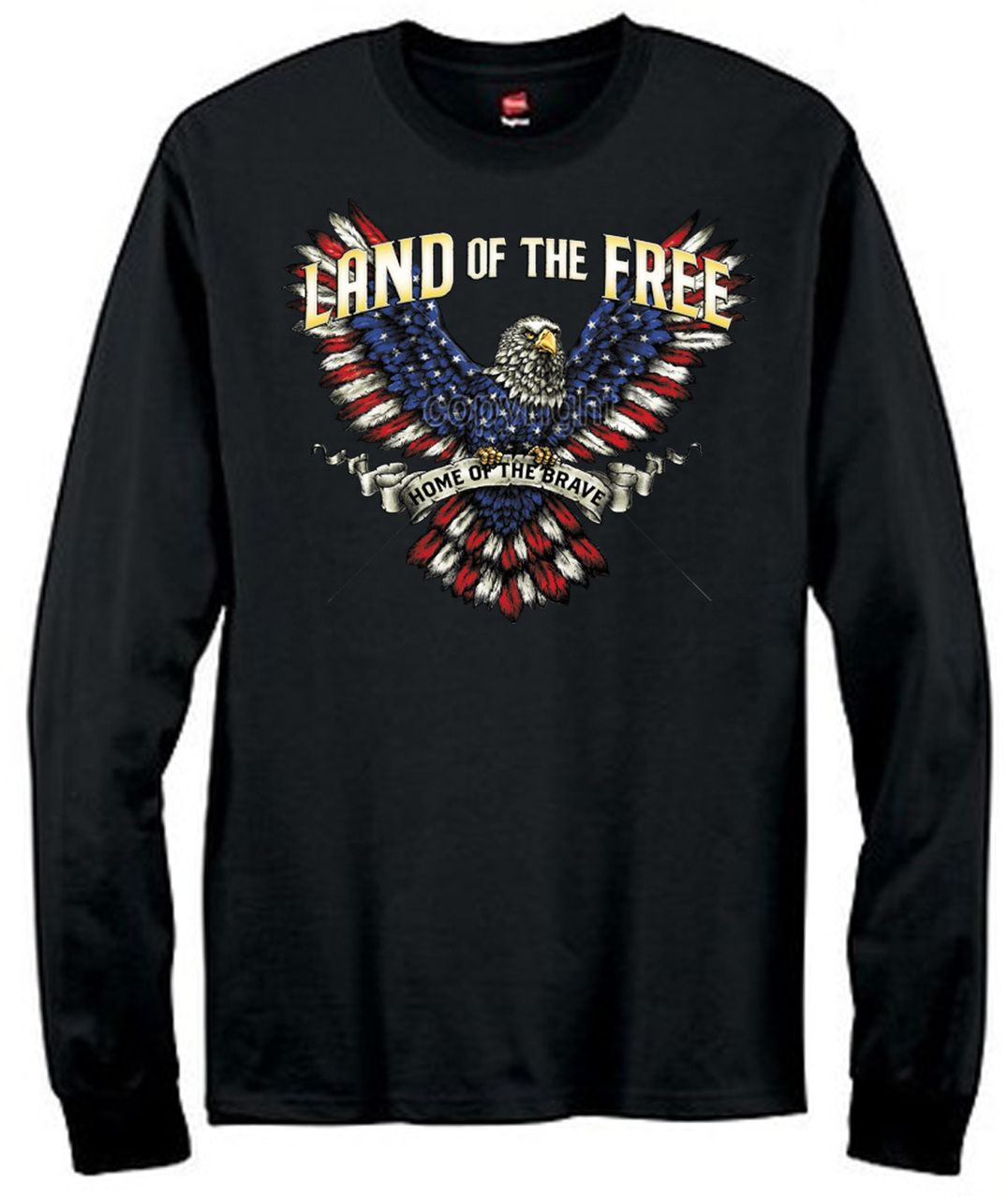 Eagle Land Of The Free T-Shirt