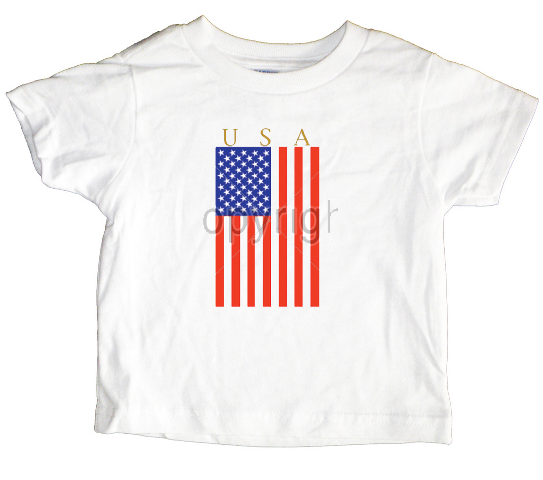 USA Flag Toddler T-Shirt