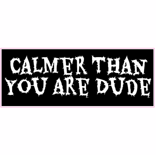 Calmer Than You Are Dude Sticker | U.S. Custom Stickers