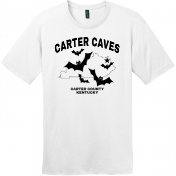 Carter Caves Kentucky T Shirt Bright White District Perfect Weight Tee DT104