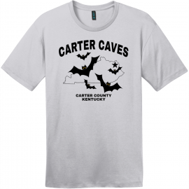 Carter Caves Kentucky T Shirt Silver District Perfect Weight Tee DT104