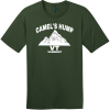 Camel's Hump Mountain Vermont T-Shirt Thyme Green District Perfect Weight Tee DT104